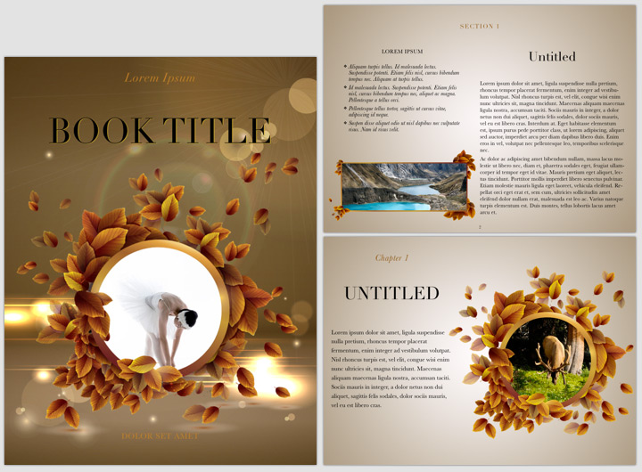 E book templates for apple s ibooks author for Cookbook templates for mac